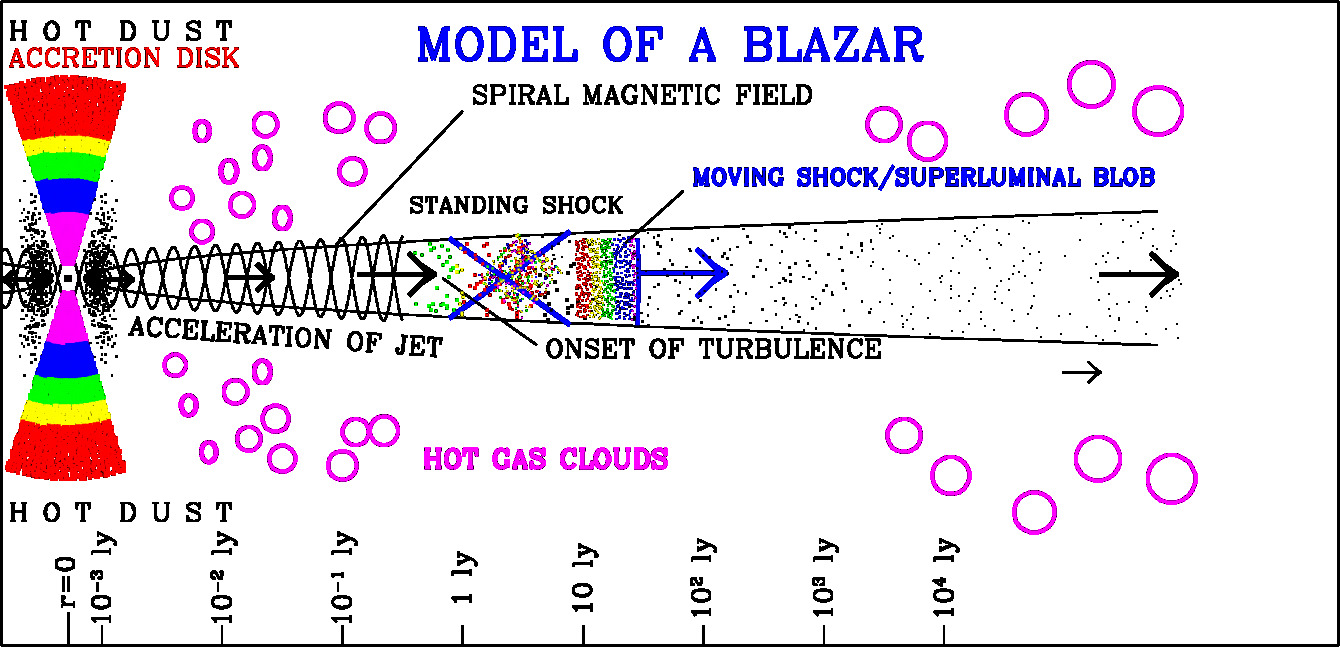Model of the emission processes in a blazar jet